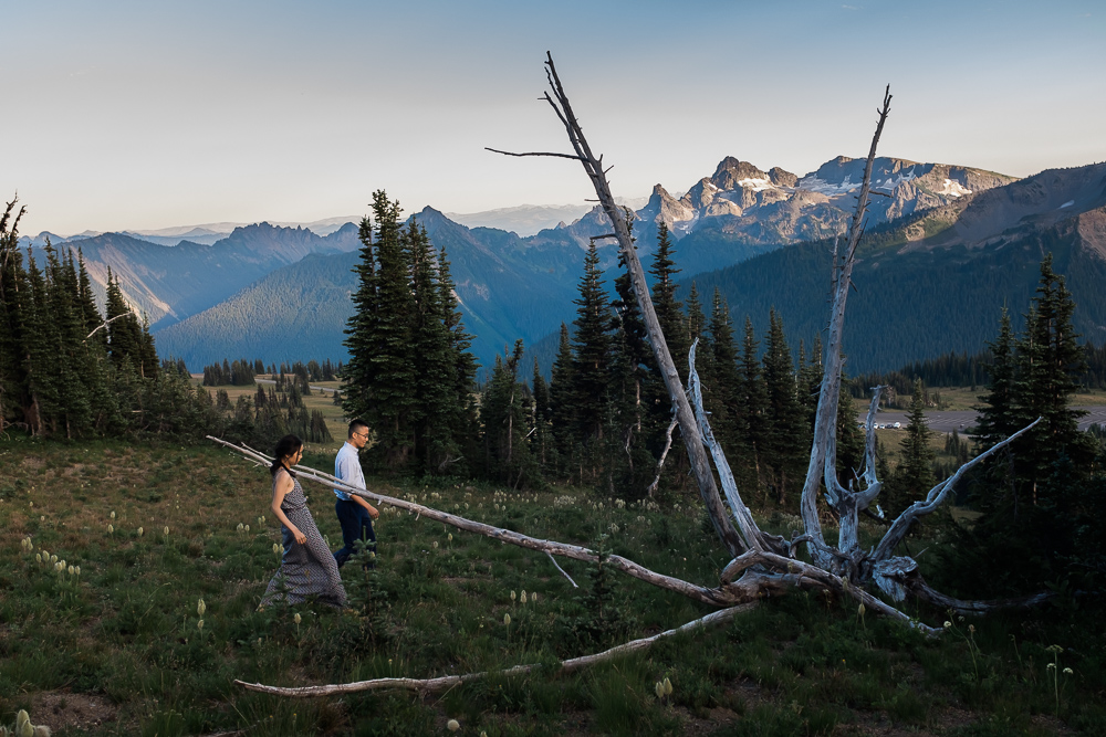 mt_rainier_engagement-002